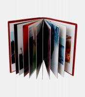 Lavin Panoramik Albüm