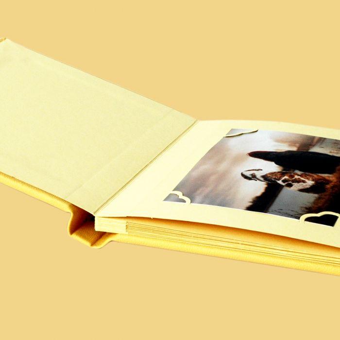 Sarı Peluş Albüm
